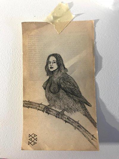 A Little Bird Told Me #3