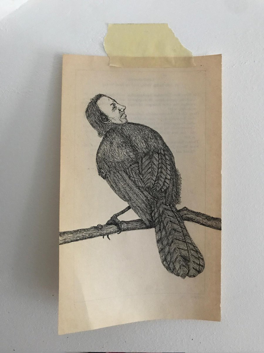 A Little Bird Told Me # 4