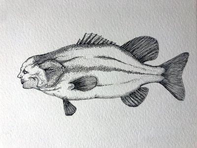 Plenty More Fish in the Sea #2