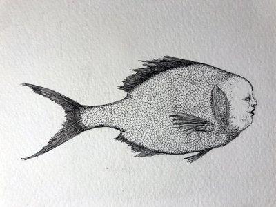 Plenty More Fish in the Sea #4