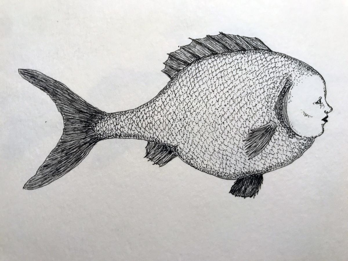 Plenty More Fish in the Sea #6