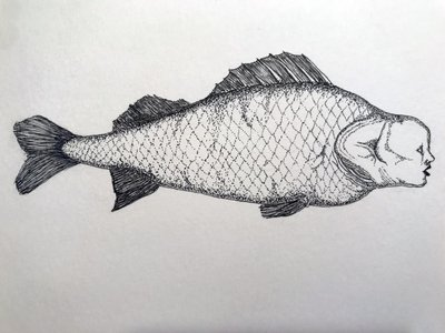 Plenty more Fish in the sea #7