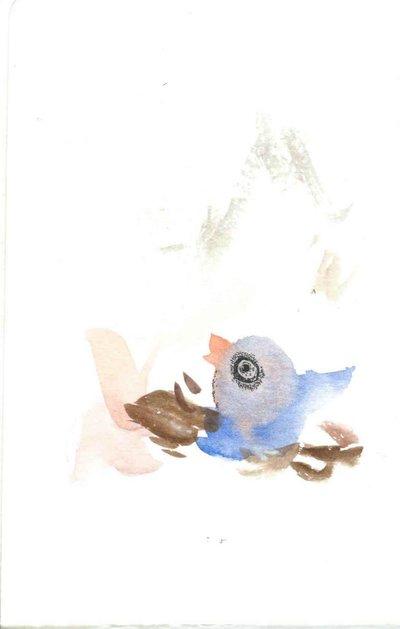 Accidental Bird