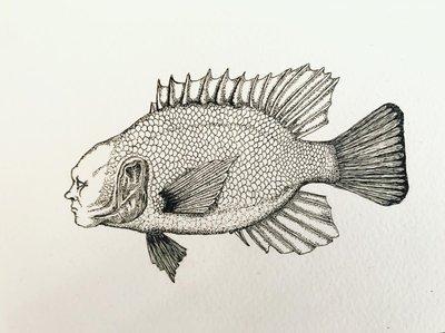 Plenty More Fish in the Sea #1